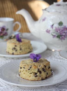 Teatime Hopitality  3
