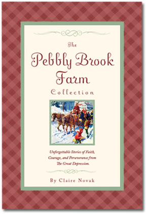 Pebbly Brook small cover
